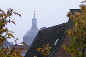 Leiden rooftops