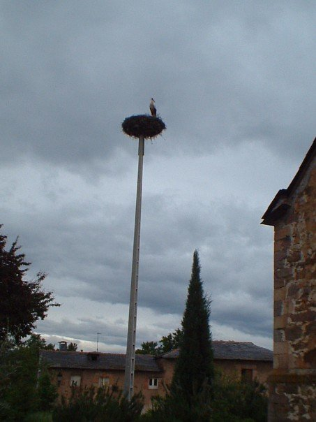 Stork's nest on its own dedicated pillar