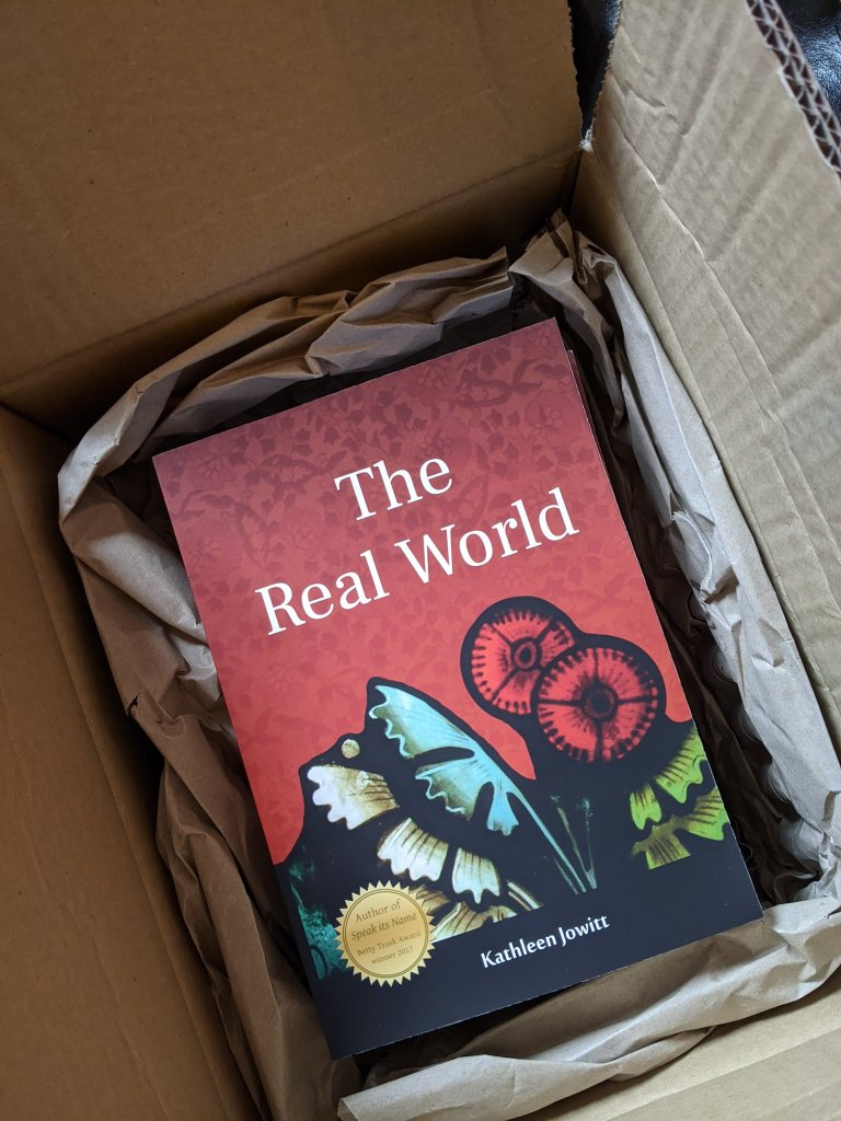 Cardboard box containing a stack of paperback copies of 'The Real World'