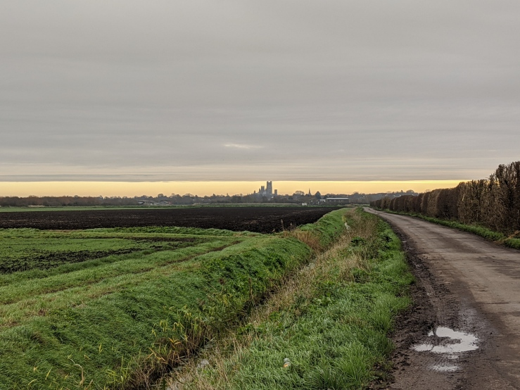 A flat landscape of open fields with deep ditches. On the horizon there is a city with a prominent tower.