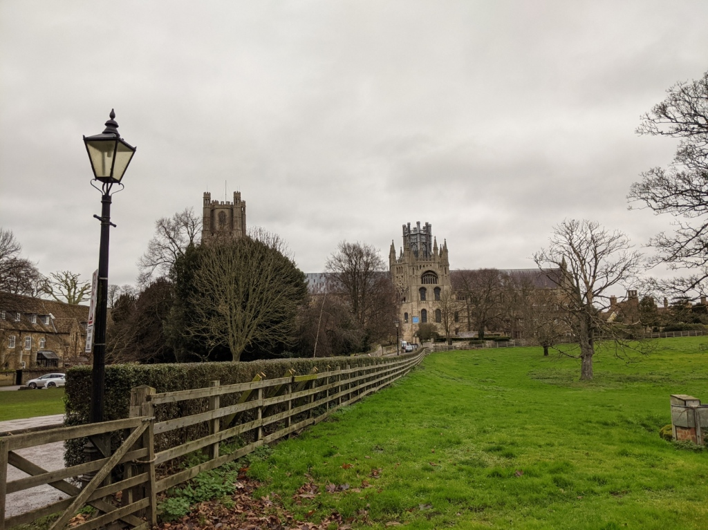 Ely cathedral, seen from the south side, with the west tower partly hidden by a tree, but with a good view of the lantern across a green field