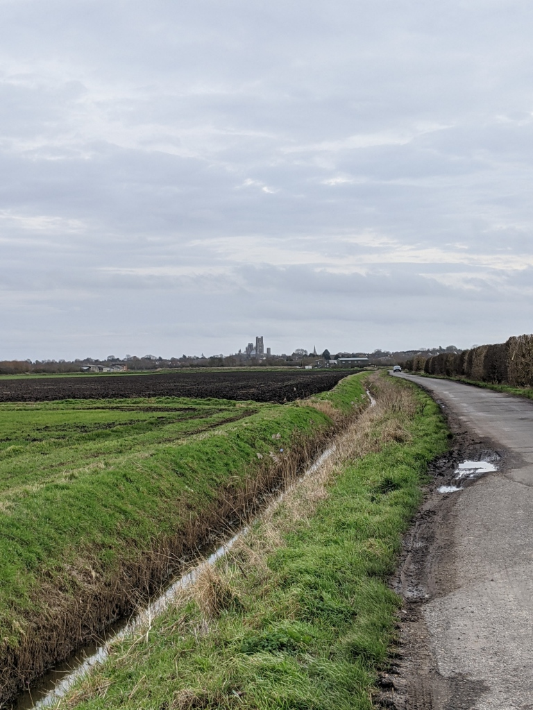 Deep grass-edged ditch alongside a single-track road running along flat arable farmland. Cathedral tower on the horizon.