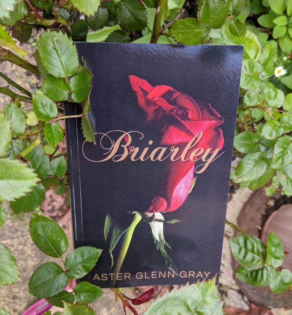 Paperback copy of 'Briarley' by Aster Glenn Gray, in a rosebush.