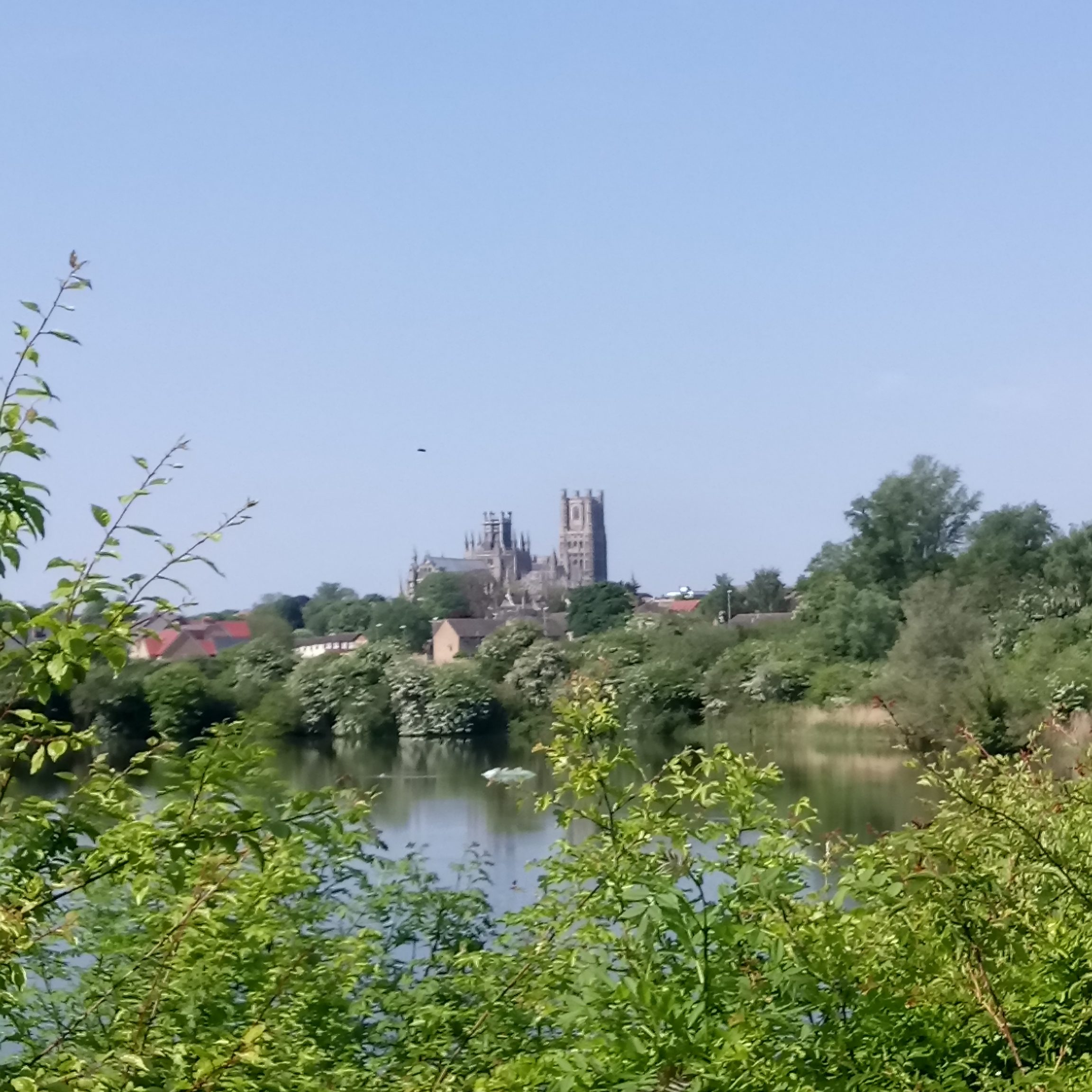 Cathedral seen across an expanse of water, with green bushes in the foreground